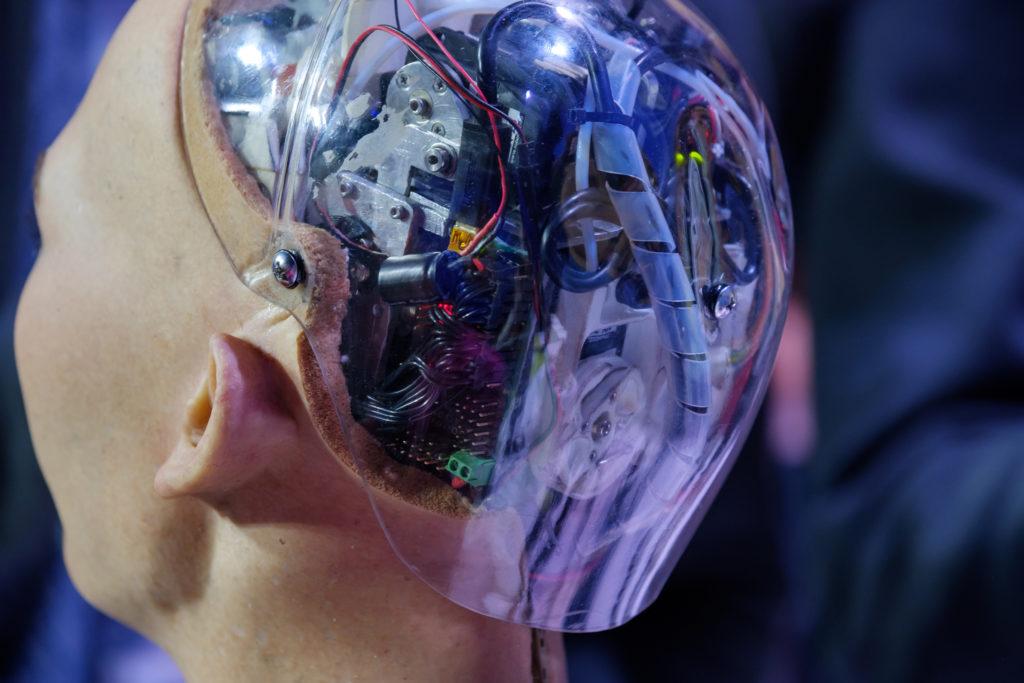 Hanson Robotics China Take Over
